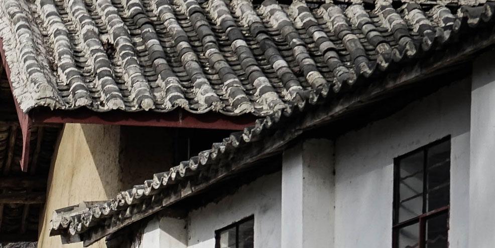 Hoe mos verwijderen van je dak? Doe het vooral niet zelf.