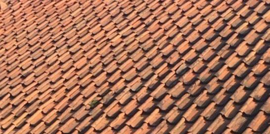 Boomse dakpannen
